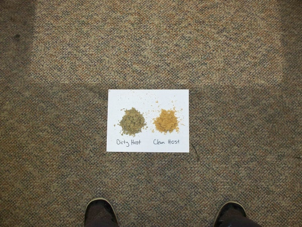 Dry Carpet Cleaning Example