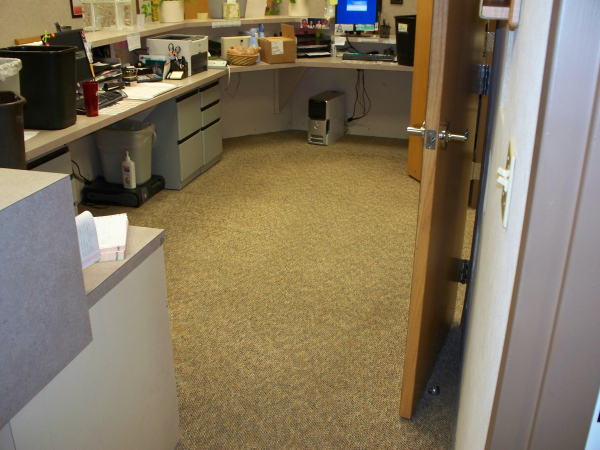 Dry Carpet Cleaning After